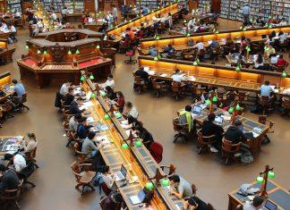 Studiekostnader – från kurslitteratur i högskolan till hyran