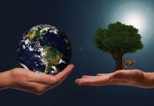 Certifiera ert miljöledningssystem och lägg grunden till en hållbar och konkurrenskraftig verksamhet | Nyhetsgram